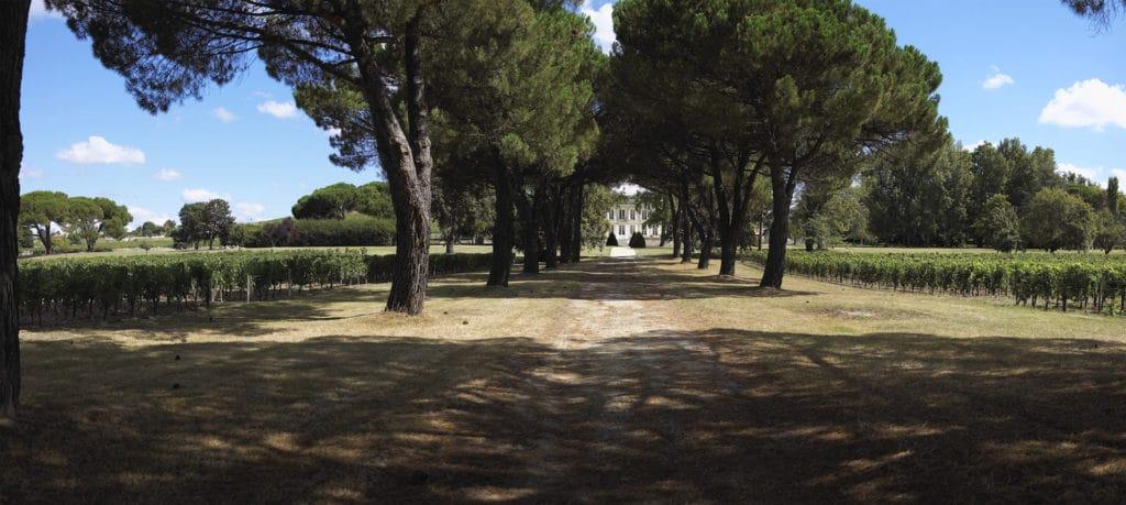 Allée Château de La Dauphine